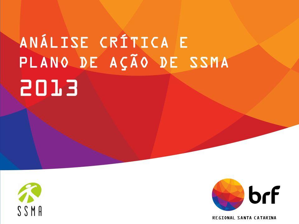 ANÁLISE CRÍTICA E PLANO DE AÇÃO DE SSMA 2013 REGIONAL SANTA CATARINA