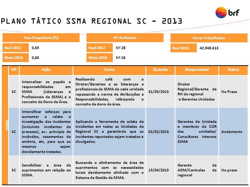 PLANO TÁTICO SSMA REGIONAL SC - 2013