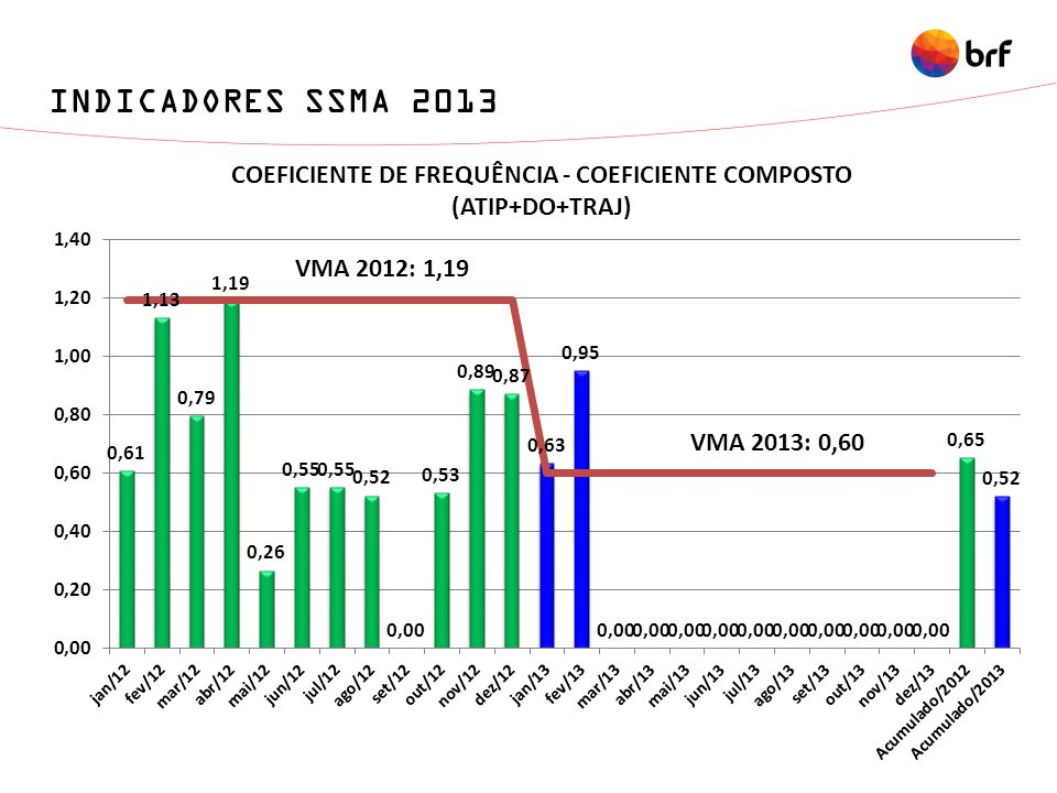 INDICADORES SSMA 2013