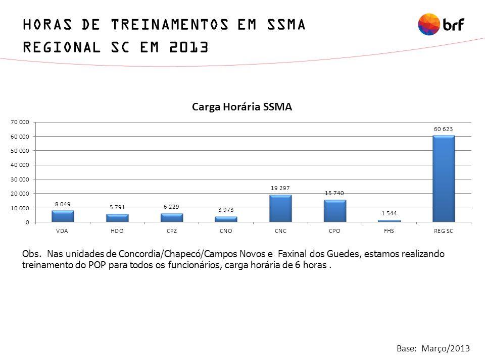 HORAS DE TREINAMENTOS EM SSMA REGIONAL SC EM 2013
