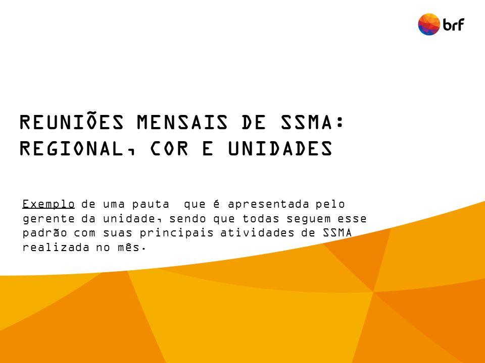 REUNIÕES MENSAIS DE SSMA: REGIONAL, COR E UNIDADES
