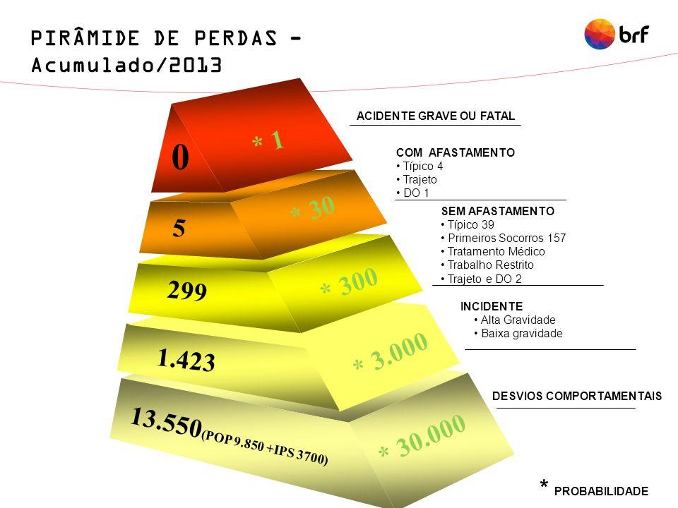 PIRÂMIDE DE PERDAS - Acumulado/2013