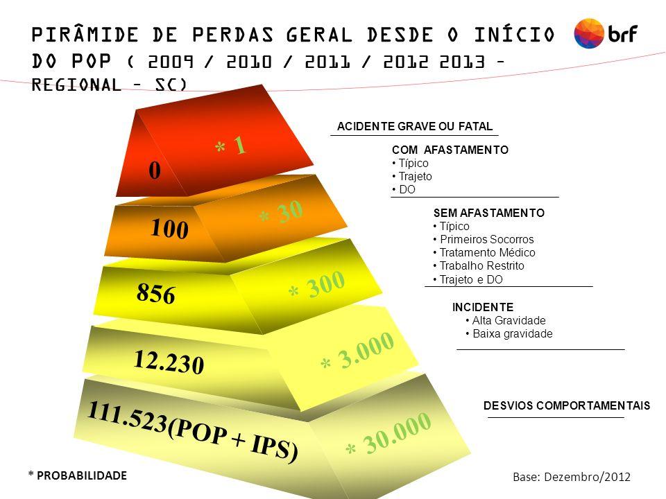 PIRÂMIDE DE PERDAS GERAL DESDE O INÍCIO DO POP ( 2009 / 2010 / 2011 / 2012 2013 – REGIONAL – SC)