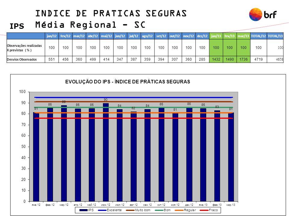 INDICE DE PRATICAS SEGURAS Média Regional - SC