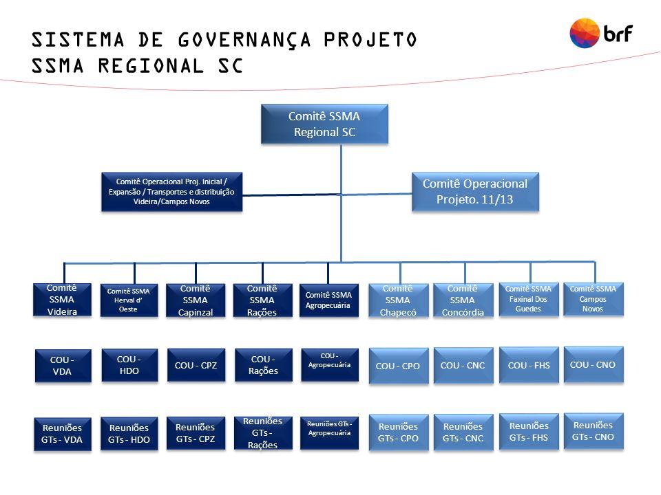 SISTEMA DE GOVERNANÇA PROJETO SSMA REGIONAL SC
