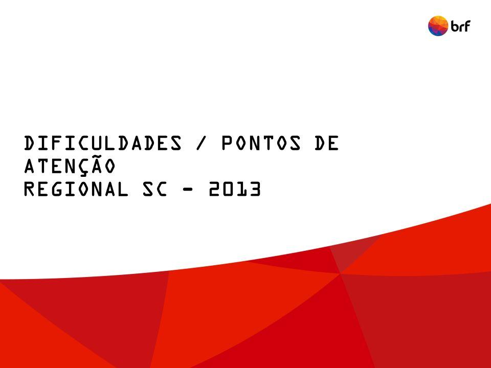 DIFICULDADES / PONTOS DE ATENÇÃO REGIONAL SC - 2013
