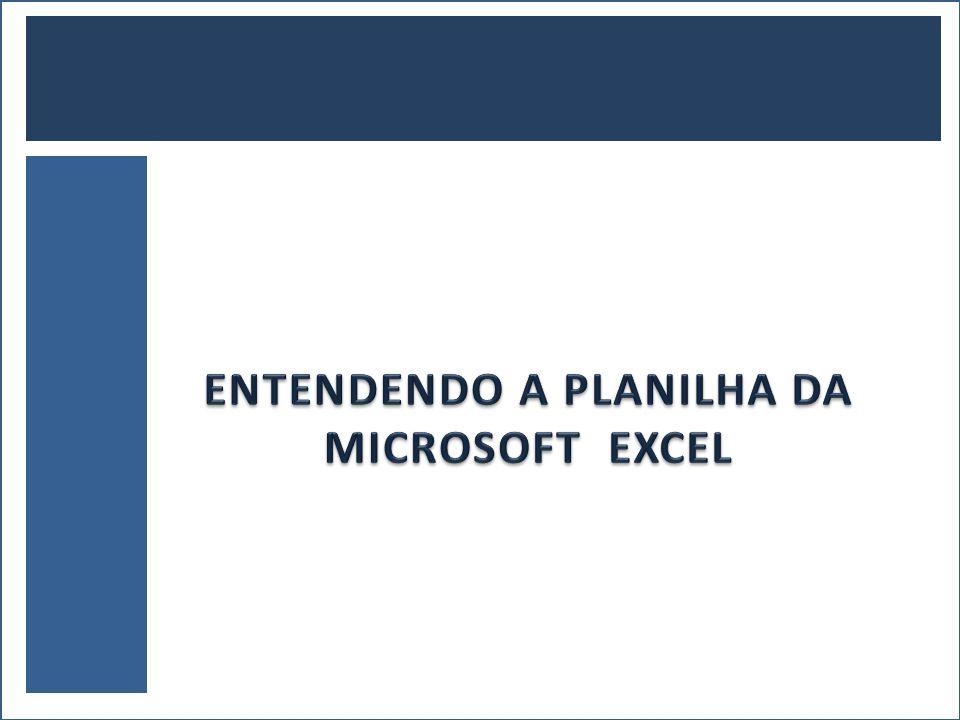 ENTENDENDO A PLANILHA DA MICROSOFT EXCEL