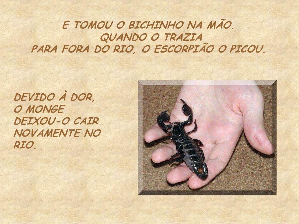 E TOMOU O BICHINHO NA MÃO. PARA FORA DO RIO, O ESCORPIÃO O PICOU.