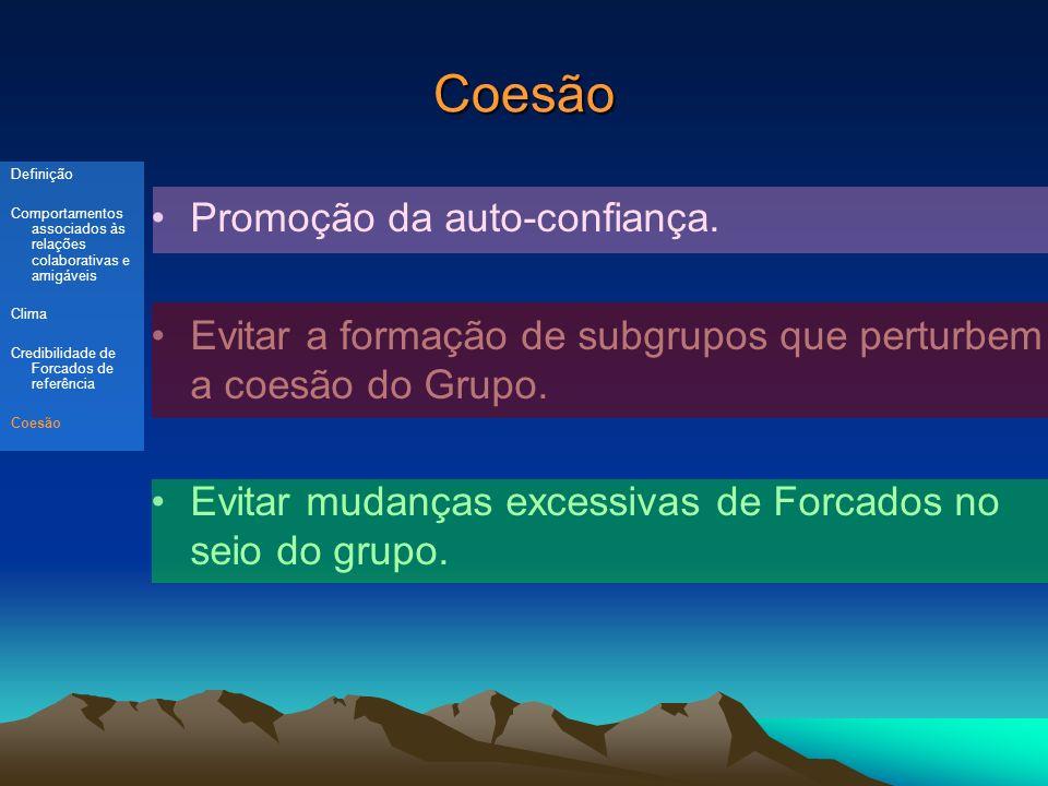 Coesão Promoção da auto-confiança.