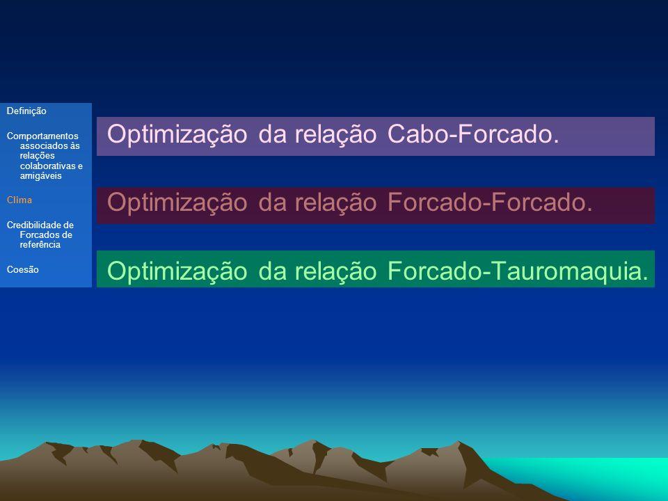 Optimização da relação Cabo-Forcado.