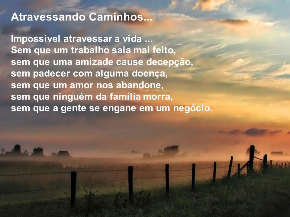 Atravessando Caminhos...