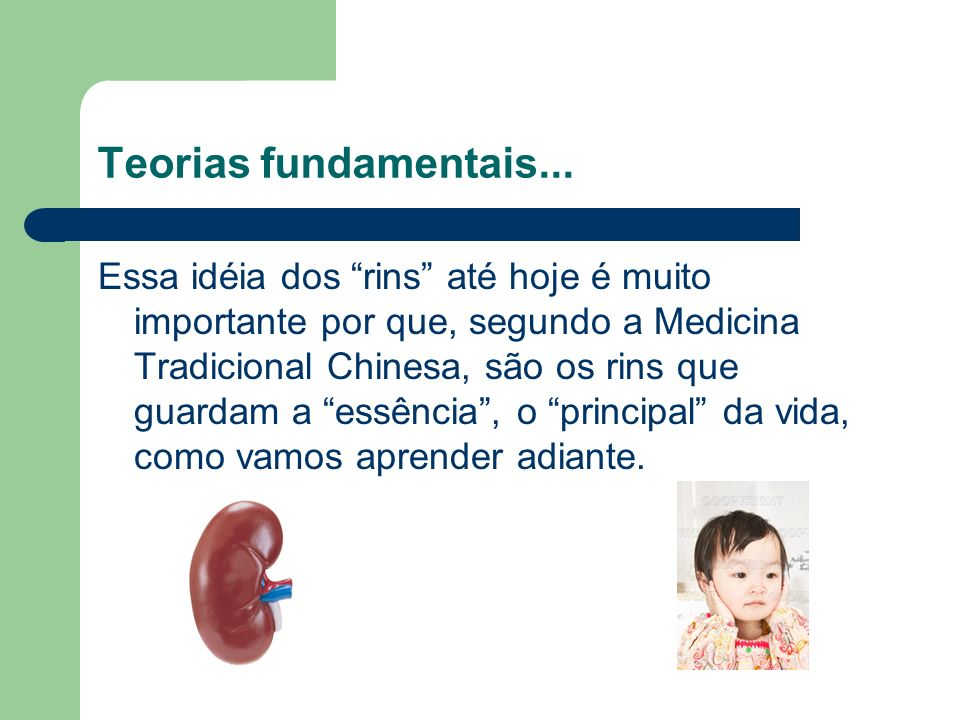 Teorias fundamentais...