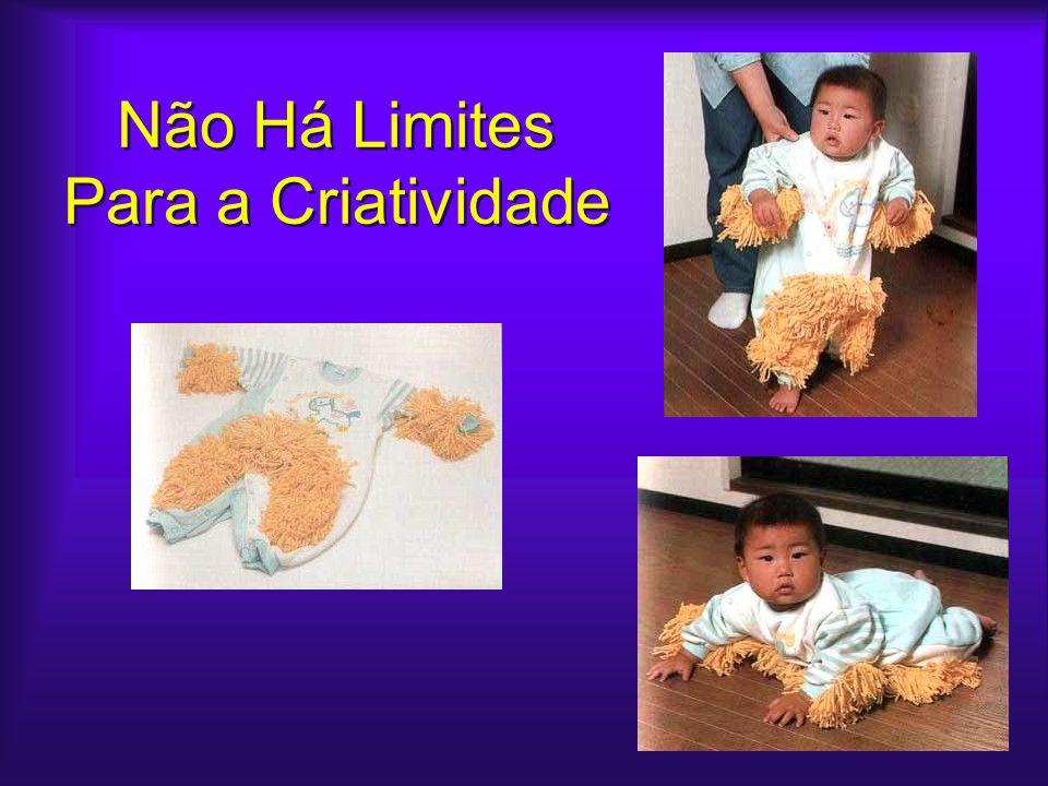 Não Há Limites Para a Criatividade