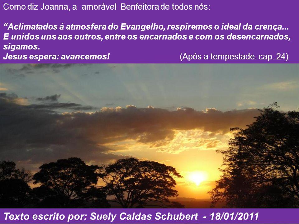 Texto escrito por: Suely Caldas Schubert - 18/01/2011