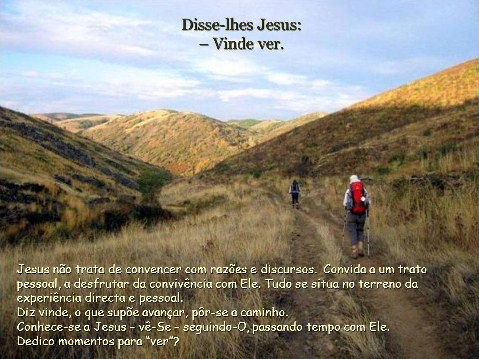 Disse-lhes Jesus: – Vinde ver.