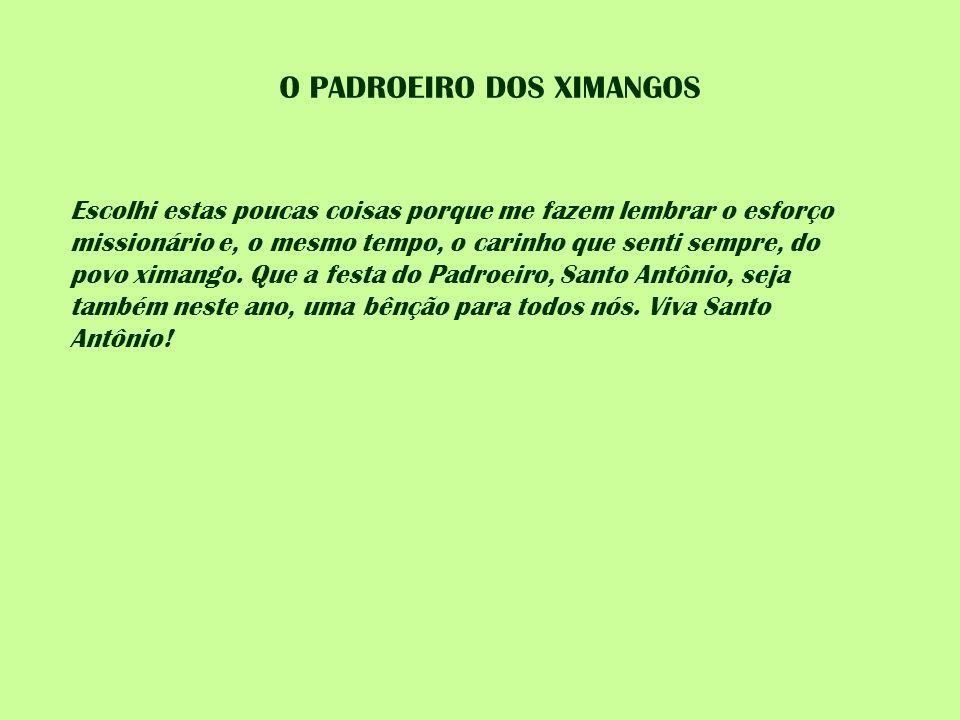 O PADROEIRO DOS XIMANGOS