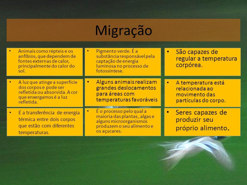 Migração Seres capazes de produzir seu próprio alimento.