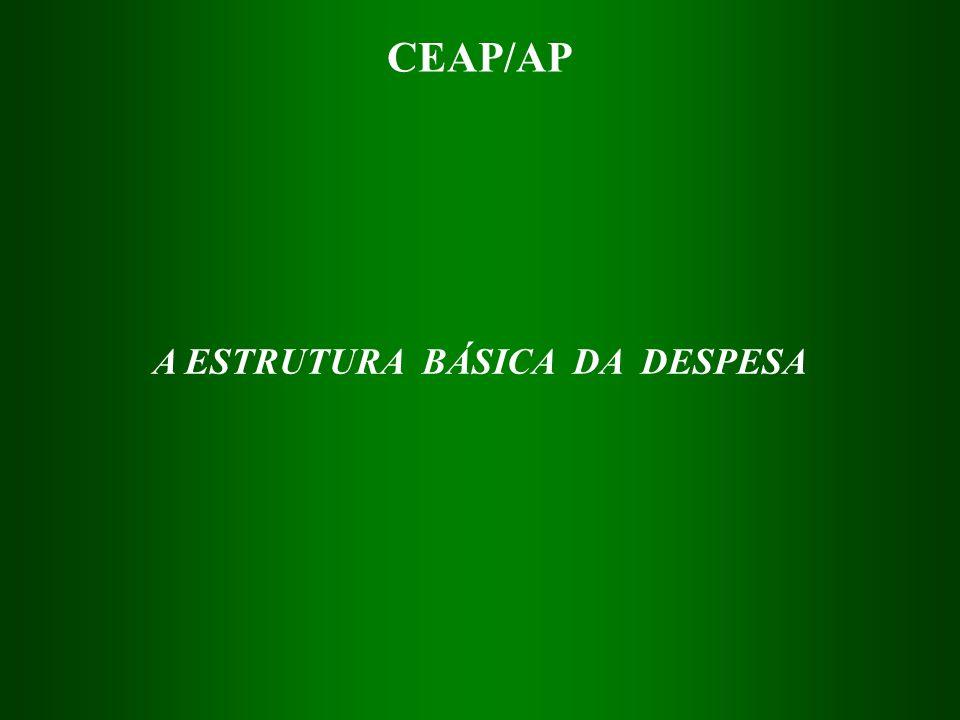 A ESTRUTURA BÁSICA DA DESPESA