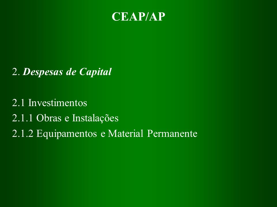 CEAP/AP 2. Despesas de Capital 2.1 Investimentos