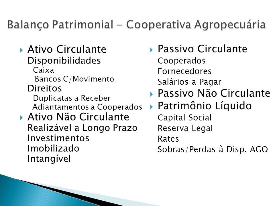 Balanço Patrimonial - Cooperativa Agropecuária