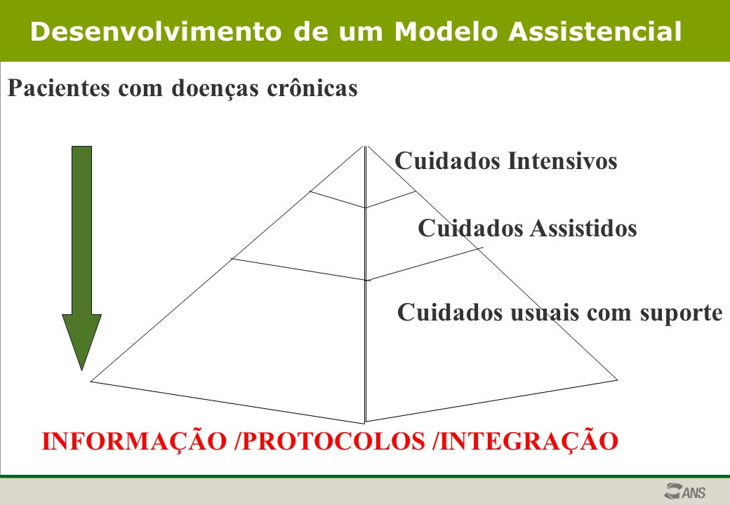 Desenvolvimento de um Modelo Assistencial
