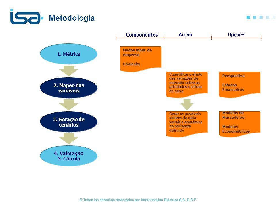 Metodologia Componentes Acção Opções 1. Métrica 2. Mapeo das variáveis