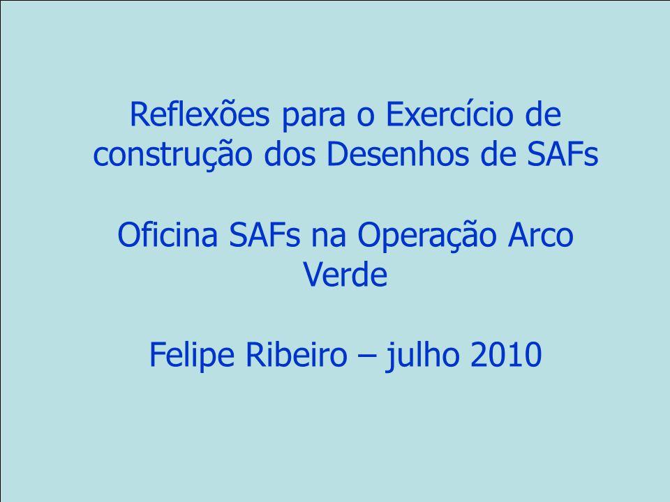 Reflexões para o Exercício de construção dos Desenhos de SAFs