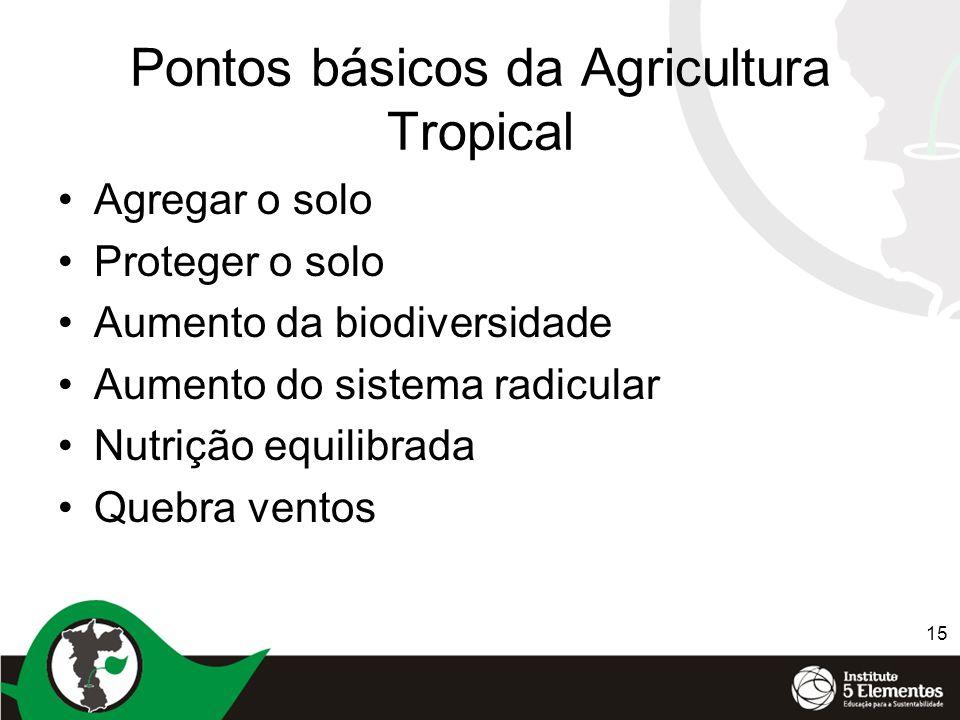Pontos básicos da Agricultura Tropical