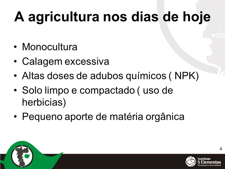 A agricultura nos dias de hoje