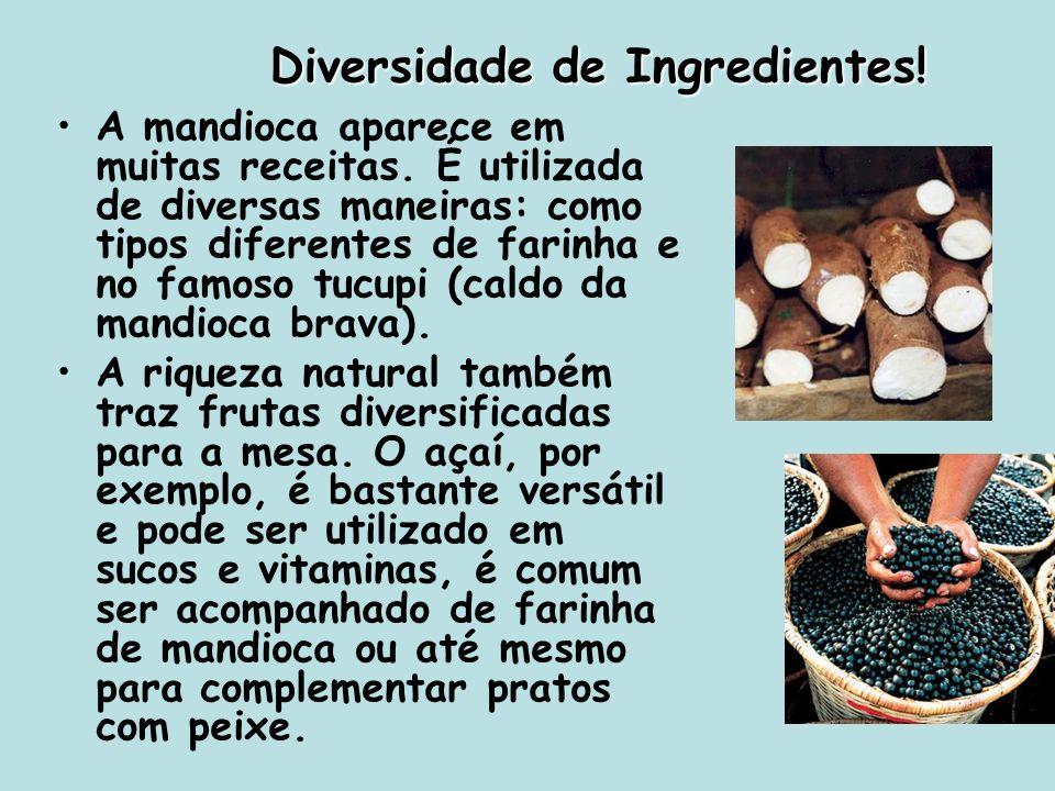 Diversidade de Ingredientes!