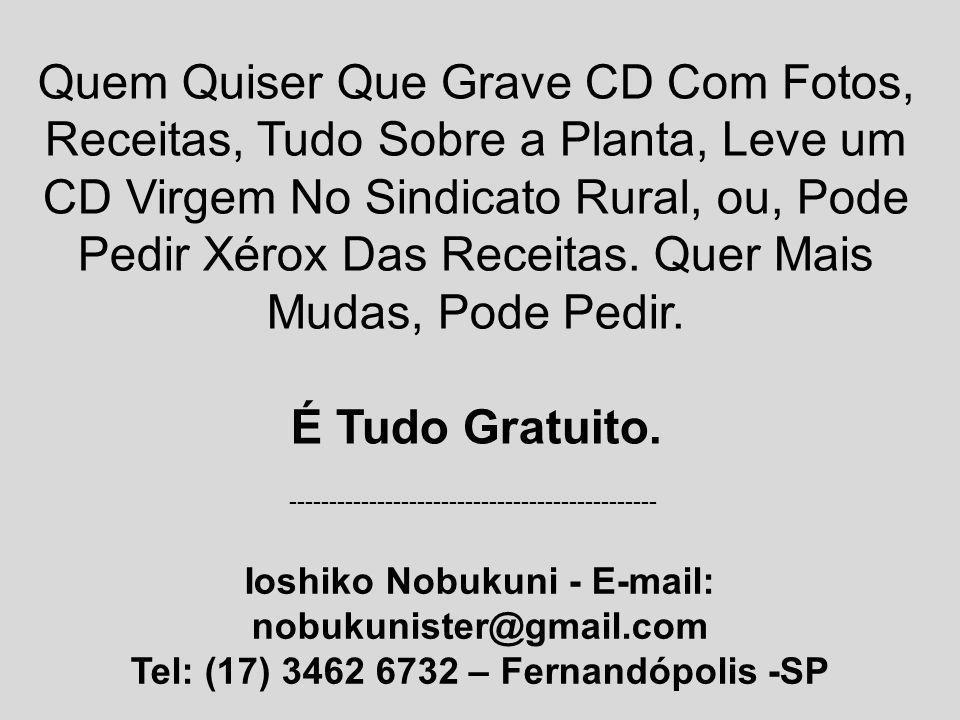 Tel: (17) 3462 6732 – Fernandópolis -SP