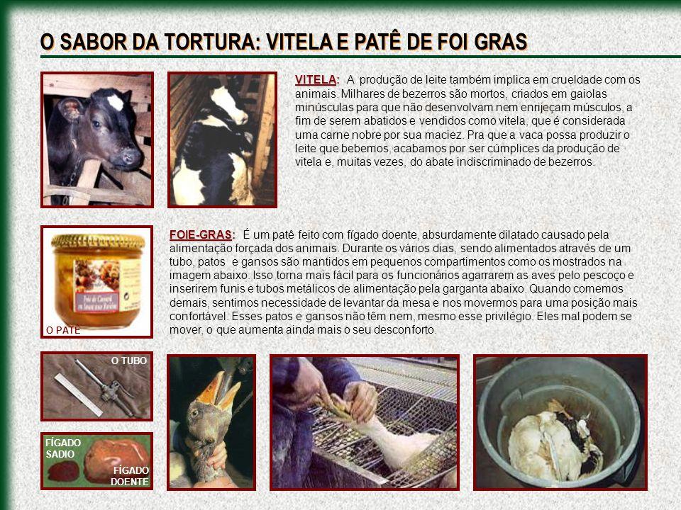 O SABOR DA TORTURA: VITELA E PATÊ DE FOI GRAS