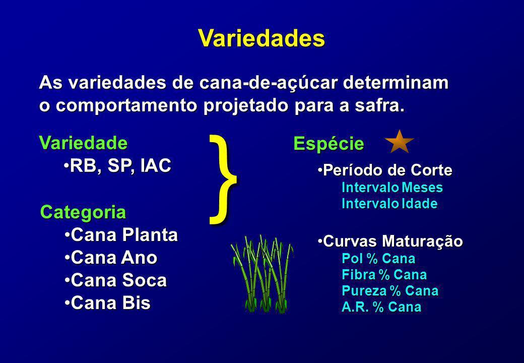 } Variedades As variedades de cana-de-açúcar determinam