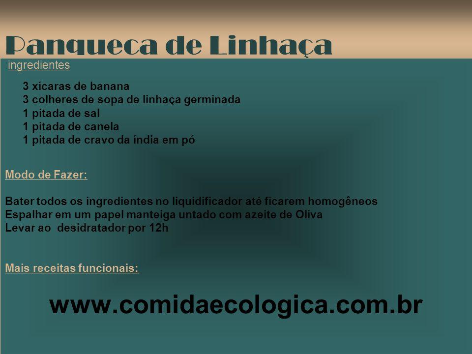 Panqueca de Linhaça www.comidaecologica.com.br