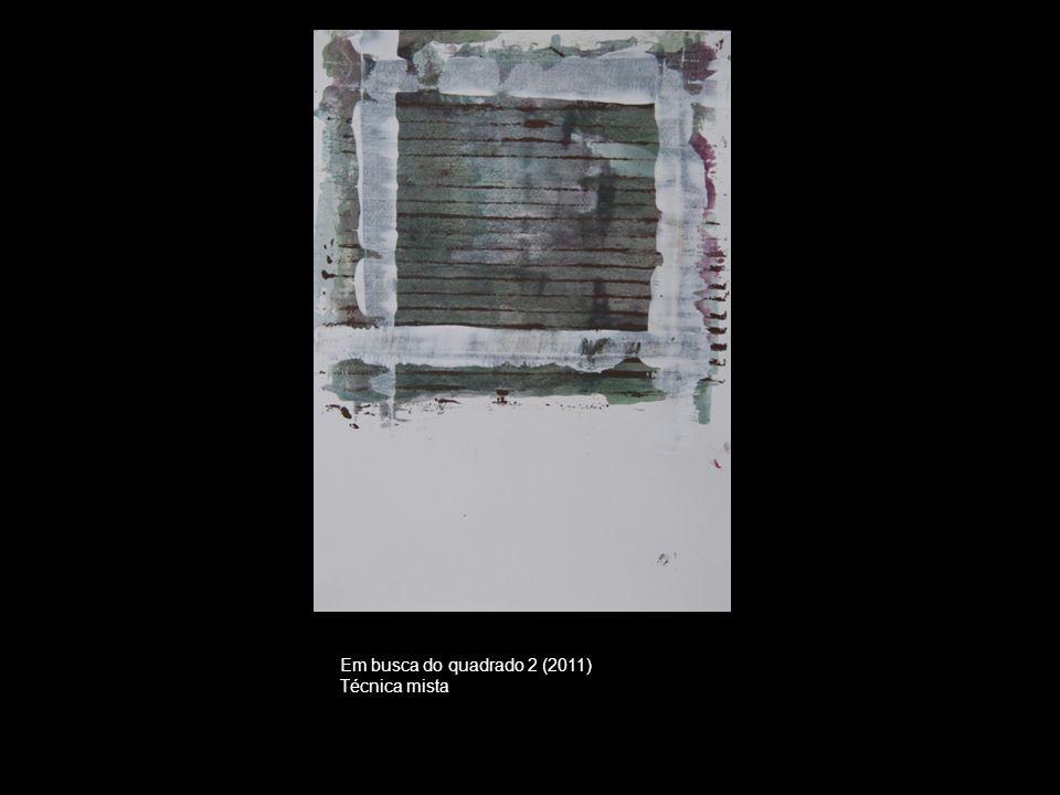 Em busca do quadrado 2 (2011) Técnica mista