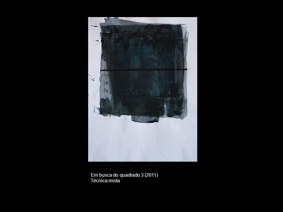 Em busca do quadrado 3 (2011) Técnica mista
