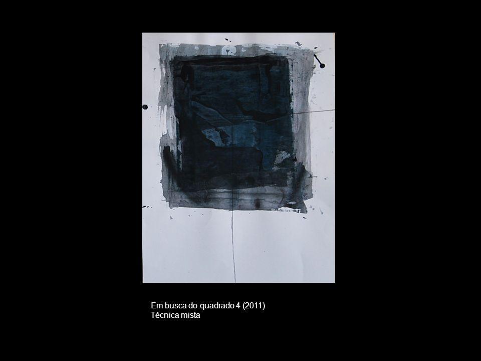 Em busca do quadrado 4 (2011) Técnica mista