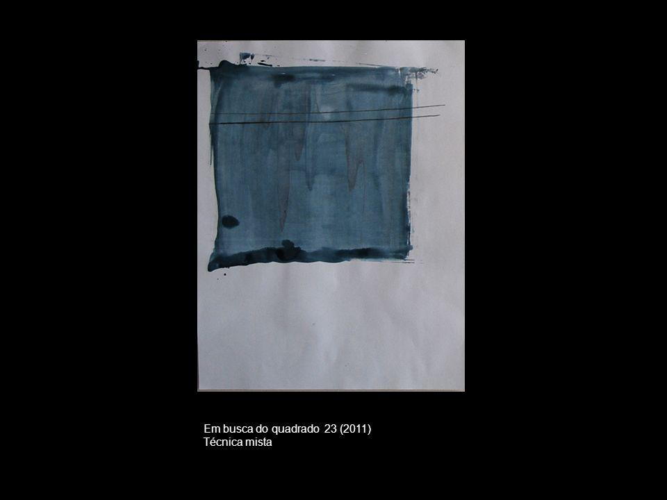 Em busca do quadrado 23 (2011) Técnica mista