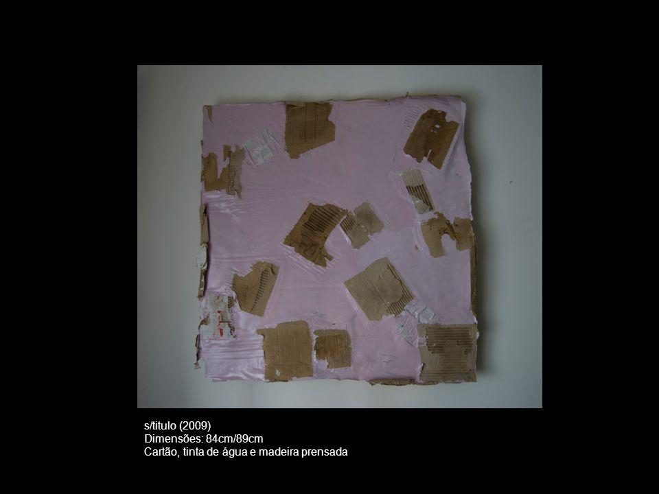 s/titulo (2009) Dimensões: 84cm/89cm Cartão, tinta de água e madeira prensada