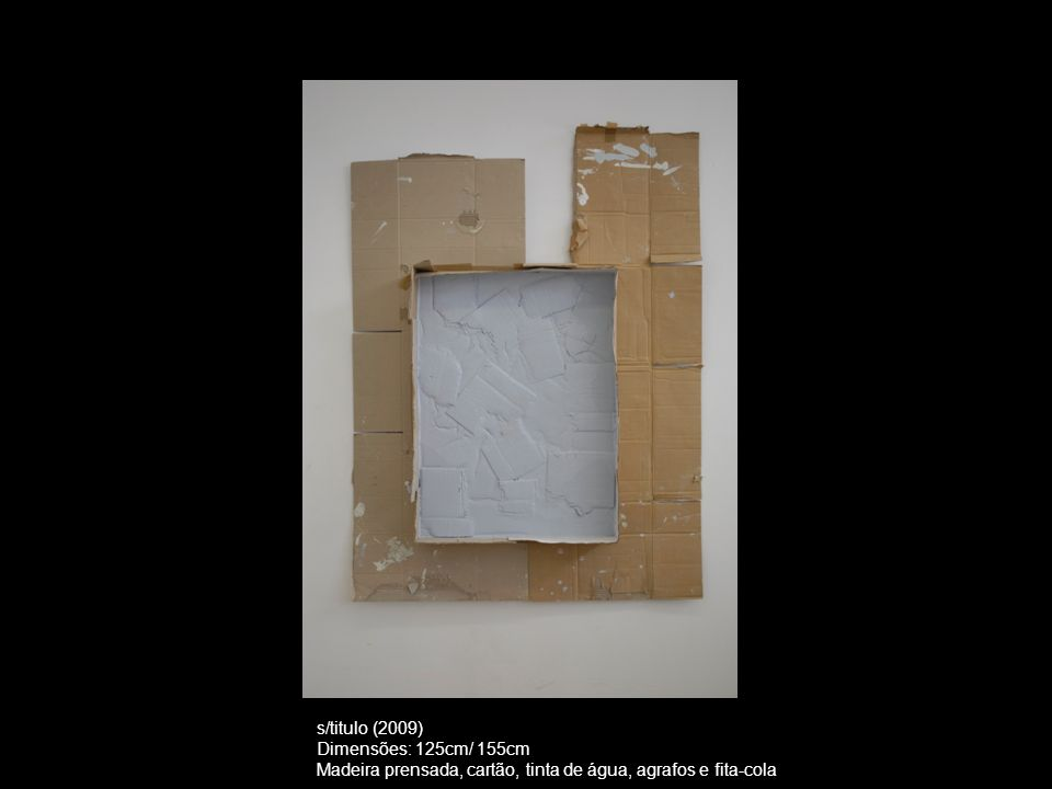 s/titulo (2009) Dimensões: 125cm/ 155cm.