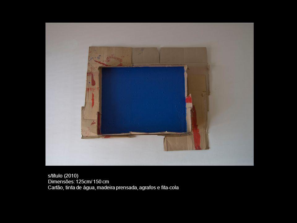 s/título (2010) Dimensões: 125cm/ 150 cm.