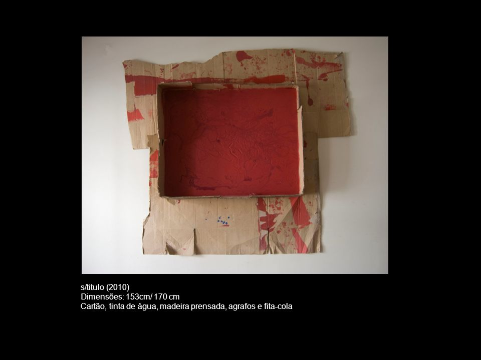 s/titulo (2010) Dimensões: 153cm/ 170 cm.