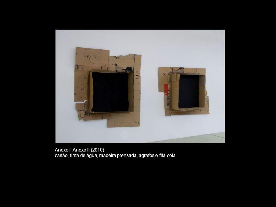 Anexo I, Anexo II (2010) cartão, tinta de água, madeira prensada, agrafos e fita-cola