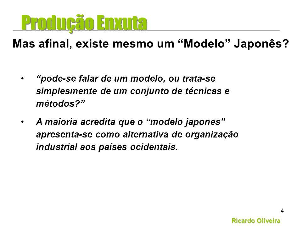 Mas afinal, existe mesmo um Modelo Japonês