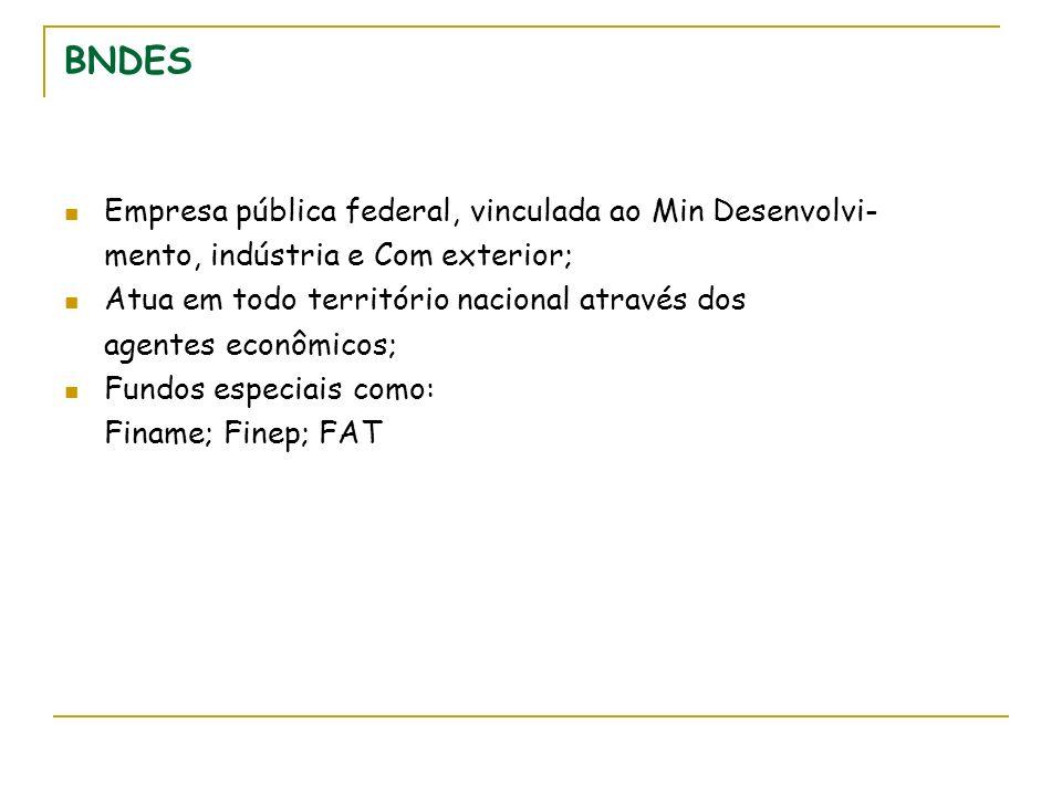 BNDES Empresa pública federal, vinculada ao Min Desenvolvi-