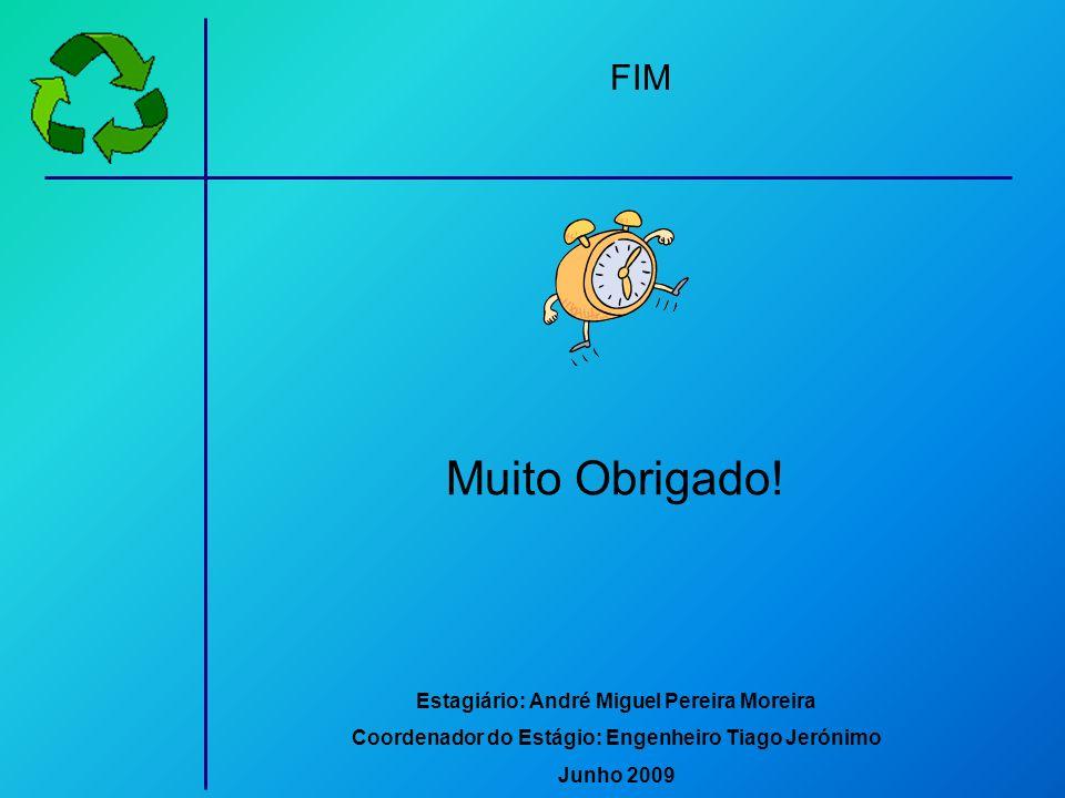 Muito Obrigado! FIM Estagiário: André Miguel Pereira Moreira