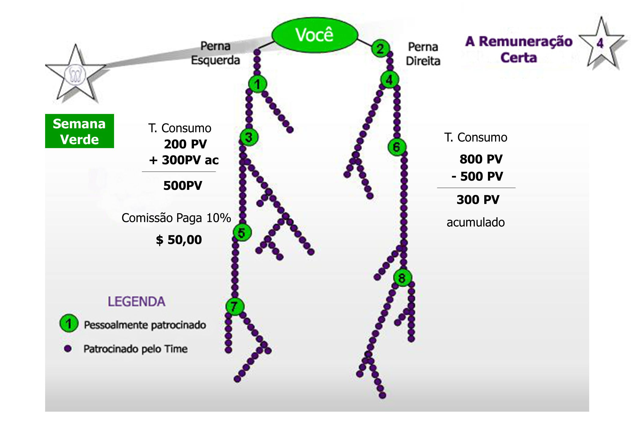Semana Verde 300 PV T. Consumo 200 PV T. Consumo + 300PV ac 800 PV