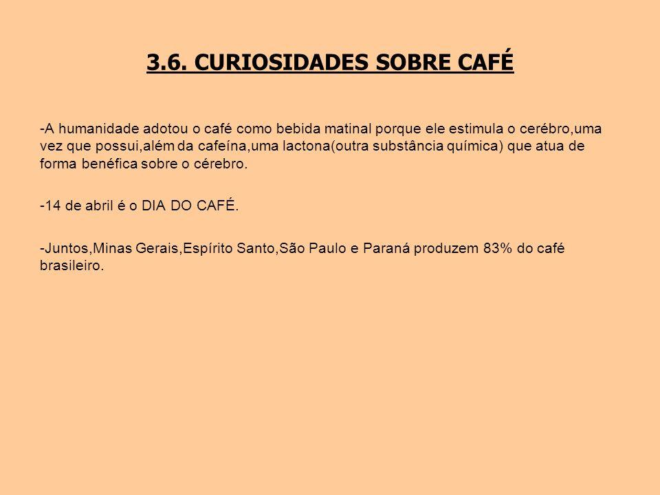 3.6. CURIOSIDADES SOBRE CAFÉ