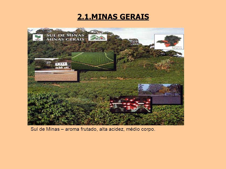 2.1.MINAS GERAIS Sul de Minas – aroma frutado, alta acidez, médio corpo.