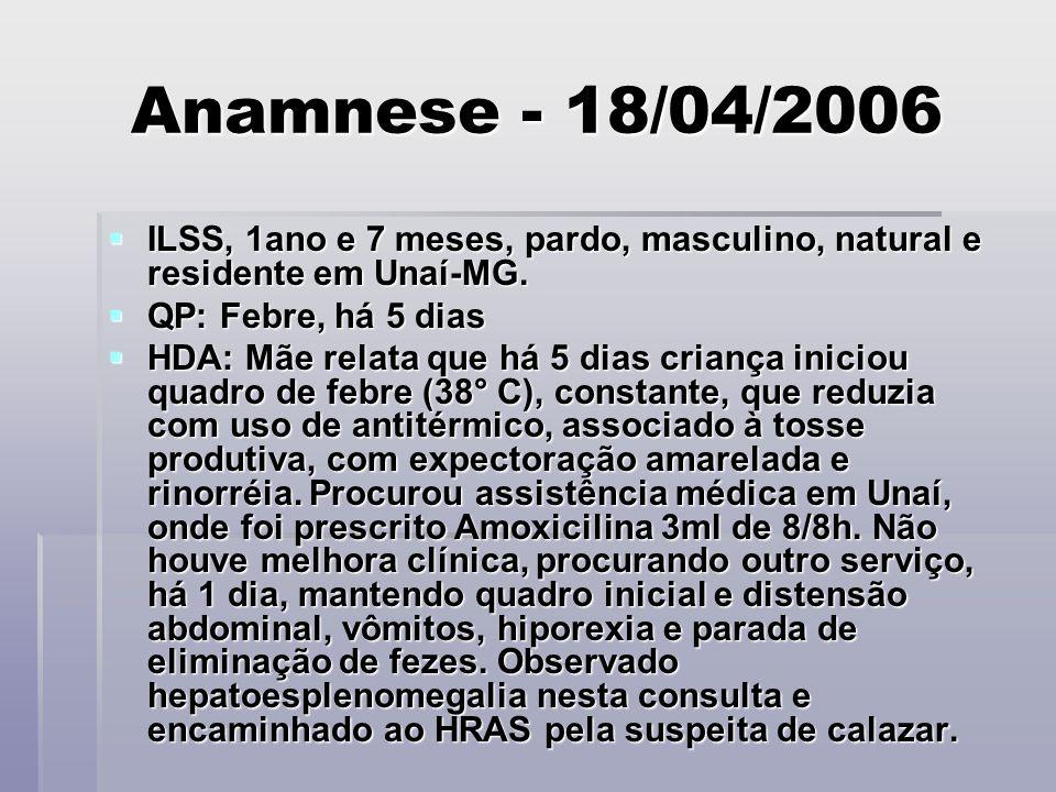 Anamnese - 18/04/2006 ILSS, 1ano e 7 meses, pardo, masculino, natural e residente em Unaí-MG. QP: Febre, há 5 dias.